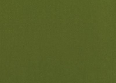 K5000 61 smooth moss 03