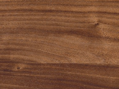 Nussbaum-natur gwinner