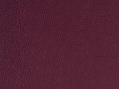 Vermont 17127 purple